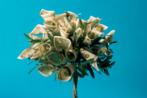 A small tree with dollar bills as leaves