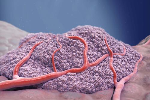 Merck KGaA pancreatic cancer