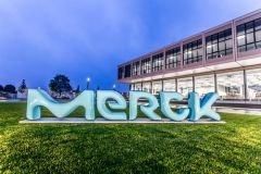 Merck/Pfizer's cancer immunotherapy latecomer hits a snag