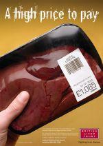 British Liver Trust - liver