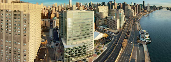 New York - Alexandria Center for Life Science