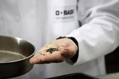 BASF to pay €849m for nutrition specialist Pronova