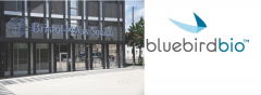 FDA hands BMS and bluebird bio a priority review for ide-cel
