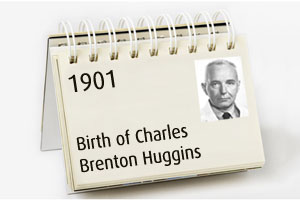 Birth of Charles Brenton Huggins