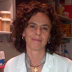 TxCell Prof Chiara Bonini