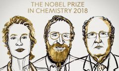 Three share Nobel chemistry prize for work on protein 'evolution'
