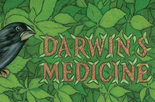 Darwin's Medicine