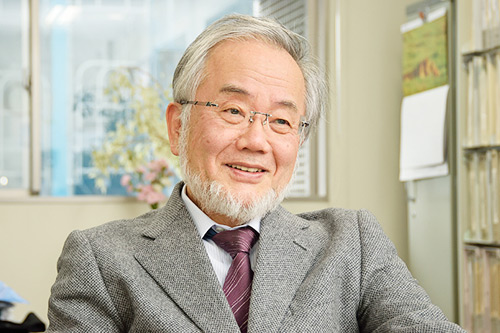 Yoshinori Ohsumi Nobel Prize in Physiology or Medicine