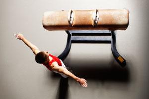 Gymnastic Horse
