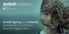 Anthill Agency launch digital-focused academy