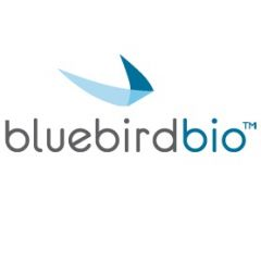Bluebird bio leans on pipeline and Zynteglo launch as revenues fall