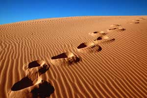 Footsteps moving away in a sandy landscape