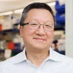Seng Cheng