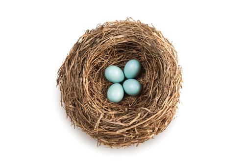 Nurturing Change duck eggs