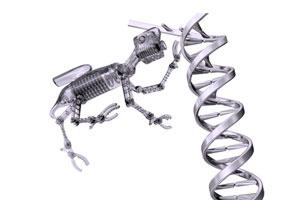 DNA_damage